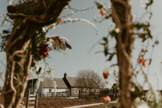 boho wild rustic farm wedding